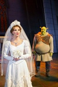 The Wedding Day Shrek Dress Princess Fiona