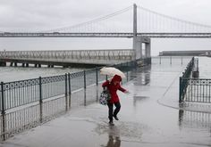 walks through a puddle created by king tides after picking up plastic bottles floating in the bay at Pier 14 along the Embarcadero in San Francisco, Calif. on Tuesday, Nov. 24, 2015. King tide conditions are causing higher than usual water levels.