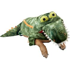 Alligator Halloween Dog Costume at PETCO--- Tanks costume to match our Neverland Pirates theme! lol