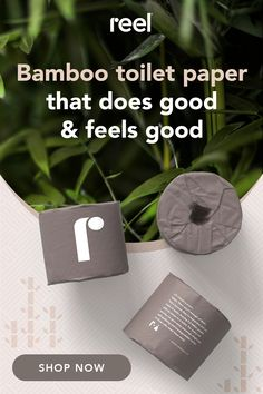 Reel® - Bamboo Toilet Paper - Delivered Straight to Your Door Cleaning Solutions, Cleaning Hacks, Clean Toilets, Primitive Homes, Country Primitive, Save Our Earth, Reduce Reuse Recycle, No Plastic, Natural Cleaning Products