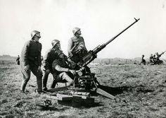 Dutch anti air artillery.