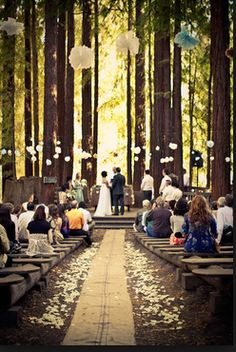 woodsy wedding dream location. Note the awesome seats!!