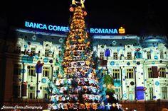 Bucharest Christmas Market Fotograf: Lerescu Florin Cezar