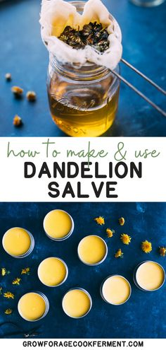 Learn how to make this dandelion salve recipe using foraged dandelions! This hom. - Learn how to make this dandelion salve recipe using foraged dandelions! This homemade herbal salve - Natural Add Remedies, Cold Home Remedies, Herbal Remedies, Natural Treatments, Salve Recipes, Ginger Benefits, Herbalism, Sore Muscles, Dandelions