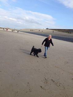 Catootje (het net-alsof-nichtje van Grote Blonde Reus) en Ollie zelf mogen natuurlijk ook mee. Ze zijn niet te houden, vooral ook omdat al die nieuwsgierige mensen hun nieuwsgierige honden hebben meegenomen. Dolle pret dus daar op en voor de Hondsbossche zeewering.