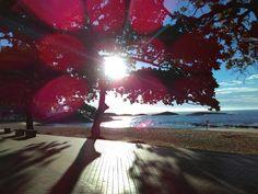 Praia das Castanheiras  Guarapari ES