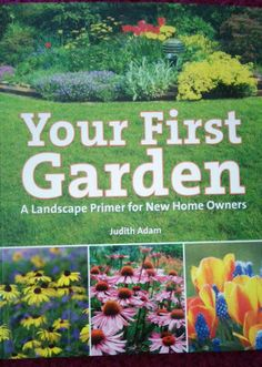 Test + Try =Results : Your First Garden by Judith Adam