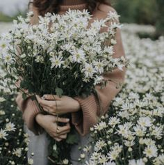 New vintage flowers photography wallpaper pretty floral wallpapers ideas Flower Aesthetic, Aesthetic Photo, Aesthetic Pictures, Wild Flowers, Beautiful Flowers, No Rain, Jolie Photo, Flower Wallpaper, Vintage Flowers