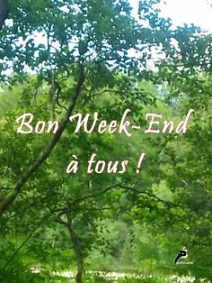 Hello Weekend, Happy Weekend, Bon Week End Image, Weekend Images, Ending Quotes, Messages, Good Morning Quotes, Good Night, Thinking Of You