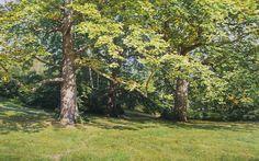GENNADIY KIRICHENKO - Árvores no outono