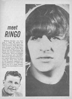 Meet Ringo