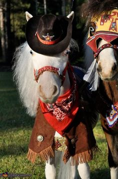 Gentle Carousel Miniature Therapy Horses - Halloween Costume Contest via @costumeworks