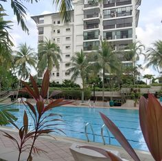 Housesitting assignment in Singapore