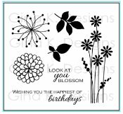 Blossom Mini Stamp Set- from the past Spring Parade StampTV Kit