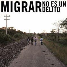 Las personas migrantes, refugiadas y solicitantes de asilo no son criminales. Son personas buscando un lugar seguro, escapando de la violencia que azota a sus países.   En México y en todo el mundo, las personas migrantes son discriminadas, amenazadas y secuestradas. Unamos nuestras voces para ponerle fin a esta situación. Actúa ya en: www.alzatuvoz.org/migrantes