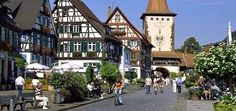 black forest castle germany - Google Search