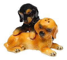 CG Black and Brown Cocker Spaniel Puppies Salt and Pepper Shakers, Multicolor *** Quickly view this special  product, click the image : Salt Pepper Shaker