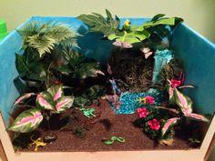 4th Grade Rainforest Ecosystem Shoebox Diorama | Tropical ...