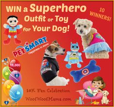 Win a Superhero Outfit or Toy for Your Dog from PetSmart! 10 winners