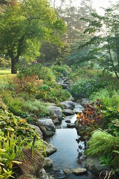 Wadia Associates - A man-made brook garden features a spring garden that includes irises, hostas, and a Japanese maple. This This project was the winner of the prestigious 2008 Palladio Award for Landscape Design.
