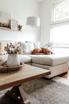 Tips for Designing a Pet-Friendly Home – Our City Nest Condo Living Room, Living Room Furniture, Living Room Decor, Living Rooms, Girl Bedroom Designs, Living Room Designs, Living Room Arrangements, Animal Room, Home Interior Design