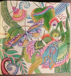 """""""#adultcoloringbook #tropicalwonderland #milliemarotta #stressreliever"""""""