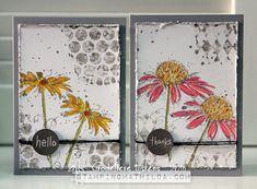 http://stampingmathilda.blogspot.com/2016/03/set-of-cards-darkroom-doors-fine-flowers.html