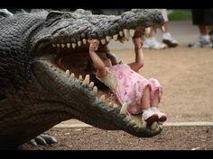 Поход в зоопарк обернулся ...