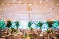 Green Tree Reception And Black Wedding Tented From Modern Botanical Maryland Woodend By Joe Foley Photography