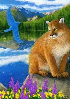A MOUNTAIN MORNING - It's a beautiful morning at the mountain lake for this big mountain lion and a pretty bluebird. Big Cats Art, Cat Art, Animal Paintings, Animal Drawings, Drawing Animals, Mystical Animals, Spring Animals, Creation Photo, Colouring Pics