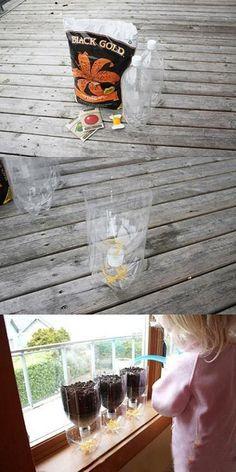 Macetas reciclando botellas de plástico