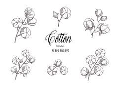 logo Botanical Cotton Clipart Hand Drawn Floral Branches Leaves Flower Wedding Summer Logo Fabric Decorate Collection Vector Line Set PNG EPS SVG Summer Logo, Magnolia Branch, Cotton Plant, Flower Alphabet, Sell My Art, Leaf Flowers, Romantic Gifts, Floral Watercolor, Line Art