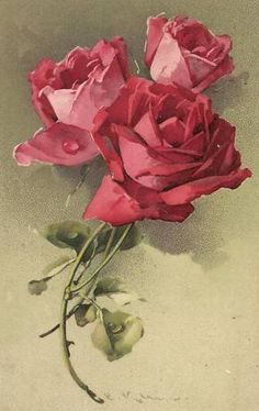 . Catherine Klein, Decoupage, Flower Images, Flower Art, Vintage Postcards, Vintage Images, Retro, Cute Girl Wallpaper, Rose Pictures