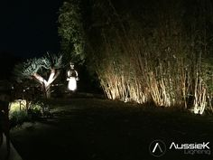This may be my favorite project to date. All of this beauty was only enjoyed during the day. Behold the new view to the backyard. I always start designing by looking from inside the home to the outside. #landscape #lighting #landscapelighting #lightingswag #zen #yucca #paintingwithlight #lightingcontrol www.aussiek.com