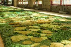 circus mag: Dries van Noten's Spring/Summer 2015 Show Carpet now in Berlin!