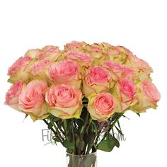 Esperance Pink Rose - This unique pink rose with its hints of green on the outer guard petals creates an antique feel for your arrangements. Add this to flowers like baby's breath and lisianthus to complete the look!