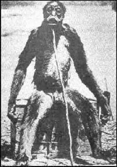 Previous pinner wrote: This is a caught bigfoot from the 1800's like 1889 in Washington state