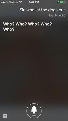 My convo with Siri 6
