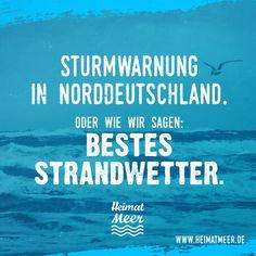 Sturm? Bestes Strandwetter!