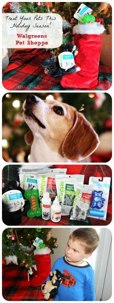 Looking for holiday and Christmas present idea for your pet? Check out the Pet Shoppe line at Walgreens! The Walgreens Holiday Gift Guide has many great gifts and presents that your furry family member will love. #HappyAllTheWay #cbias #shop