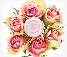 Oriflame kozmetika   Oriflame Cosmetics