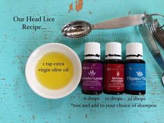 What one family uses when there are lice: 1 tsp EVOO 6 drops Lavender 12 drops Melaleuca Alternifolia 12 drops Thyme Mix & add to your choice of shampoo