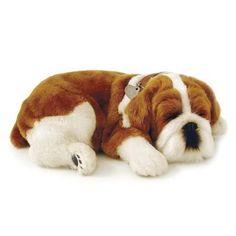Perfect Petzzz Cachorro Bulldog - Imex