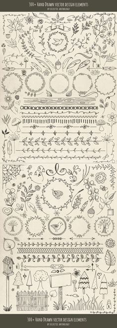 Hand Drawn Vector Design Elements by Eclectic Anthology on @creativemarket