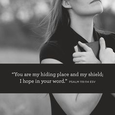 """You are my hiding place and my shield; I hope in your word."" –Psalm 119:114 ESV"