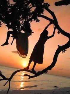 Let's climb a tree!
