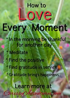 Love Every Moment Each day we are given is made up of moments. Each moment may not be �special� but we can still Love Every Moment. I�ve been thinking a lot lately about how our d�