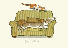 M66 CAT ATTACK - A Two Bad Mice Card by Anita Jeram