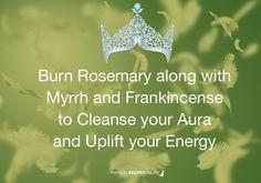 Magical Recipies Online Herbal Magic of Rosemary...☽✪☾