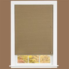 Cellular Pleated Window Shade